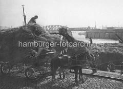 Verladung von Heu im Oberhafen / Kanal am Stadtdeich; Oberländerkähne mit Heu / Stroh beladen - Pferd und Wagen / Pferdefuhrwerk - im Hintergrund die Eisenbahnbrücke über den Oberhafenkanal.