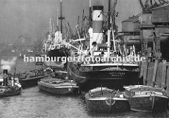 An der Kaianlage des Auguste Victoria Kais im Kaiser-Wilhelm-Hafen liegen Dampffrachter; Kräne löschen die Ladung oder beladen die Schiffe. Auf der Wasserseite der Frachtschiffe haben Schuten fest gemacht - sie werden über das bordeigenes Geschirr
