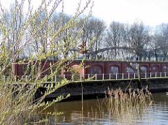 Blick über das Hafenbecken Haken - Kaimauer der alten Zollstation in Hamburg Rothenburgsort / Entenwerder; Weidenkätzchen blühen - im Hintergrund die Stahlbögen der Norderelbbrücke.