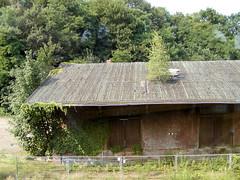 Bilder vom Bahnhof  im Hamburger Stadtteil Blankenese; altes Gebäude des ehem. Güterbahnhofs an den Bahngleisen. (2002)