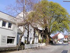 Historische Wohnhäuser / Bleicherhaus, hoher Kastanienbaum in der Ohlsdorfer Straße in Hamburg Winterhude.  ( 2003 )