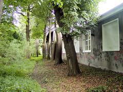 Peemöllers Garten in Hamburg Groß Borstel, 2003.