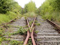 Fotos vom ehem. Güterbahnhof Lokstedt, Hamburg Groß Borstel; der Güterbahnhof wurde 1922 eröffnet 1985 stillgelegt.  (2003)