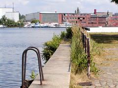 Fotos vom Verlauf der Bille in Hamburg; Kaianlagen mit Wildkraut bewachsen bei der Grünen Brücke in Rothenburgsort