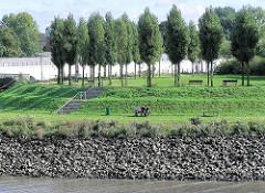 Blick über die Norderelbe auf die Grünanlage Elbpark / Entenwerder Park in Hamburg Rothenburgsort.