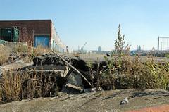 Versmannkai im Hamburger Baakenhafen - Wildkraut wächst aus dem abgesackten Kai.