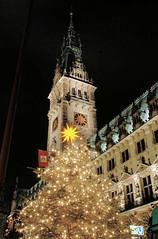 Tannenbaum mit Lichterketten vor dem Hamburger Rathaus.