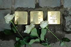 Stolpersteinverlegung durch den Künstler  Gunter Demnig in Hamburg Winterhude. Stolpersteine in der Gertigstrasse 9 in Hamburg Winterhude. Hier wohnte - BERTA SOMMERFELD - Jg. 1896 -  1941 KZ Fuhlsbüttel - deportiert 1941 - Ravensbrück - ermordet 12.
