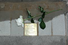 Stolpersteinverlegung durch den Künstler  Gunter Demnig in Hamburg Winterhude. Stolperstein für Adolf Biedermann in der Jarrestraße.