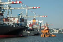 Containerschiffe am Tollerort im Hamburger Hafen - Bagger bei der Arbeit.