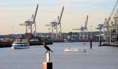 Blick von der Grevenhofer Schleuse in den Hamburger Hafen, Hafenbecken Kuhwerder Hafen; Ausflugsschiffe, Fahrgastboote mit Touristen an Bord fahren durch den Hafen - ein Kormoran sitzt auf einem Dalben.