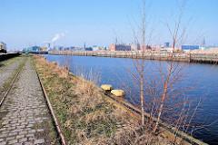 Bahnschienen am Petersenkai - junge Birken wachsen auf dem Hafenkai - Blick über den Baakenhafen zum Versmannkai - Fotos aus dem Hamburger Hafen.