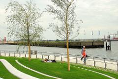 Fertiggestellte Promenade / Grünanlage  am Dalmannkai in der Hafencity Hamburg - im Hintergrund das Hafenbecken Grasbrookhafen.