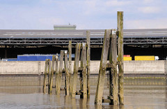 Alte Holzdalben im Moldauhafen im Hamburger Hafen - im Hintergrund Lastwagen am Überseezentrum. Das Hafenbecken Moldauhafen wurde  1887 gebaut - ein 30.000 Quadratmeter großes Gelände wurde aufgrund des nach dem Ersten Weltkrieg 1919 unterzeichneten