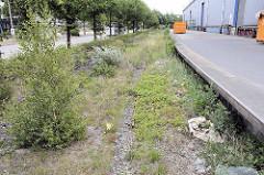 Stilgelegte Schienen / Gleise der Hafenbahn an der Versmannstraße in der Hamburger Hafencity - Lagergebäude mit Rampe, lks. die Zollstation / Zollübergang.