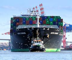 - - bildarchiv-hamburg.com - -  Das Containerschiff HATSU COURAGE läuft in den Hamburger Hafen ein; das Frachtschiff hat eine Länge von 334 m und kann 8073 Container TEU transportieren.
