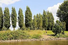Blick vom Wasser auf die Grünanlage Elbpark Entenwerder in Hamburg Rothenburgsort - 2007 wurde der Park eingeweiht; er wurde auf dem brachliegenden Gelände des Zollhafens angelegt - in diesem Zusammenhang wurde ein Hafenbecken ganz und ein weit