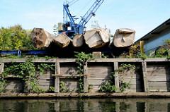 Verladeplatz für Baumstämme am Ufer der Bille; Kai mit Holzbohlen und Brettern verkleidet - Brombeersträucher überwuchern die Anlage.