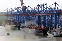 Fotos vom Hamburger Container Terminal Altenwerder; Luftaufnahme Koehlbrand. Blick auf die Liegeplätze mit Seeschiffen am Schiffskai des HHLA Terminals Altenwerder. Die meisten der Containerbrücken sind heruntergefahren - sie be- und entladen die Fra