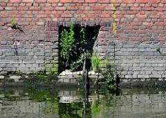 Eingelassener Eisenring; Vorrichtung zur Vertäuung von Schiffen; Reste eines Taus; Gras wächst in den Mauerfugen - Zeugnis der Hafengeschichte.