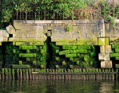 Alte verfallene  Kaimauer im Hamburger Hafen; der Sockel wird von Holzbalken gestützt. Verblendsteine sind aus der Fassade herausgebroche, die Ziegelmauer ist freigelegt. Oben ist ein altes Eisengeländer zwischen Sträuchern zu erkennen.