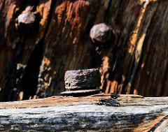 Rostige Eisenschraube - Holzsteg im Hafen; historische Hafenrelikte - Zeugnis der Vergangenheit.