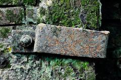 Rostige Metallkrampe / Eisenhalterung für eine Holzbalken an einer Kaimauer im Hamburger Hafen - Zeugnis der Hafengeschichte.