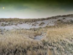Dünen mit Gras bewachsen - Morgenhimmel mit Vollmond.