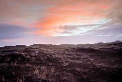 Sonnenaufgang über der Dünenlandschaft - Morgenröte; Nordseeküste Dänemarks.