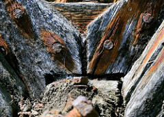Details eines alten Holzbootes, morsche Balken, verwittertes Holz - Eisenoxyd, Rost der Nägel und Schrauben färben das Holz braun. Fotos aus Lauterbach / Rügen.