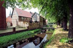 Burggraben - mittelalterliche Wallanlage in Boitzenburg / Elbe; Lindenbäume