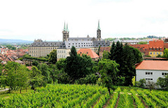 Weinanbau am Fuss des Michaelsberg in Bamberg - im Hintergrund die Türme des Bamberger Doms.