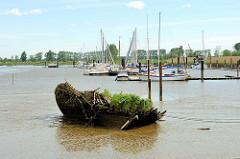 Holzwrack mit Grünpflanzen bewachsen wuchert bei Niedrigwasser im Watt des Störlochs, ein alter Arm der Stör an der Mündung.
