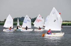 Opti-Regatta auf der Treene bei Friedrichstadt; Segelboote auf dem Wasser in der Sonne.