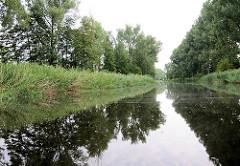 Schilfgürtel und Baumbestand an den Ufern der Wasserstrasse Elde Müritz.