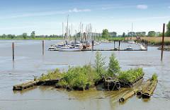 Alte mit Grünpflanzen überwucherte Holzbalken im Watt des sogenannten Störloch - ein alter Arm der Stör dirket hinter dem Sperrwerk. Im Hintergrund Sportboothafen Borsfleth.