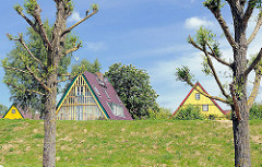 Die Dächer des Ortes Wewelsfleth hinter dem Deich der Stör - bunte Hausfassaden im Frühling; die Bäume treiben aus.