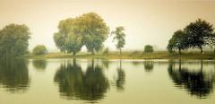 Deich an der Eider - Bäume spiegeln sich im Wasser.