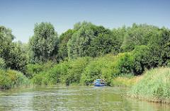 Schilfgürtel und dichter Strauch- und Baumbewuchs am Ufer der Krückau - ein kleines Motorboot fährt Richtung Sperrwerk.