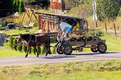 Pferd und Wagen - Pferdefuhrwerk mit Mist beladen; Dorf auf dem Weg nach Eger / Ungarn.