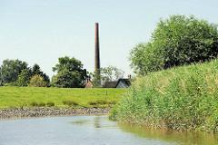Schilf am Ufer der Krückau - Fabrikschornstein zwischen Hausdächern.