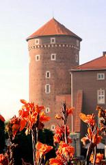 Burgturm - Festungsturm; blühende Blumen -  Wawel in Krakau / Kraków - Polen.