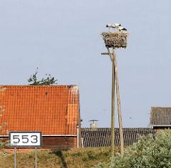 Storchennest auf Baumpfählen - Störche stehen im Nest - Schild Elbkilometer 553