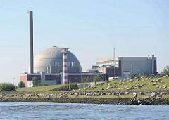 Das Atomkraftwerk am Elbufer bei Stade befindet sich seit 2005 im Rückbau - der Abriss des Kraftwerks soll bis 2015 abgeschlossen sein. Eine Schafherde weidet auf dem Elbdeich - einige der Tiere stehen am Flussufer der Elbe und trinken Wasser.