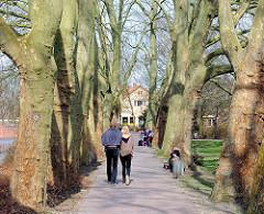 Platanenallee am sonnigen Frühlingstag an der Ilmenau in Uelzen - Spaziergänger geniessen die Sonne.