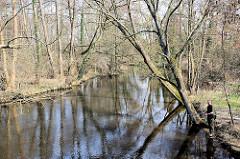 Der Fluss Ilmenau in Uelzen - Frühlingstag mit Sonne; ein Angler steht am Ufer.