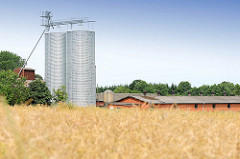 Futtersilo / Getreidesilo in Bünningstedt / Ammersbek - Blick über ein Kornfeld.