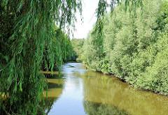 Lauf der Trave in Bad Oldesloe,  Bäume, Weiden am Flussufer.