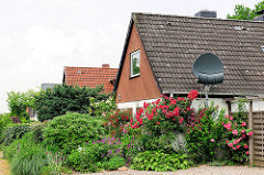 Siedlung Daheim; Ahrensburg - Ammersbek; Metropolregion Hamburg. Einzelhäuser mit Spitzdach, Einfamilienhaus - Rosenstock mit roten Rosen an der Hauswand - Satellitenschüssel.