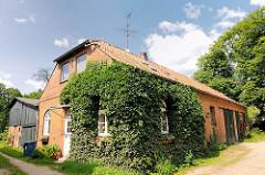 Nebengebäude - Ziegelarchitektur am Herrenhaus Altfresenburg / Bad Oldesloe. Hausfassade mit Efeu bewachsen.